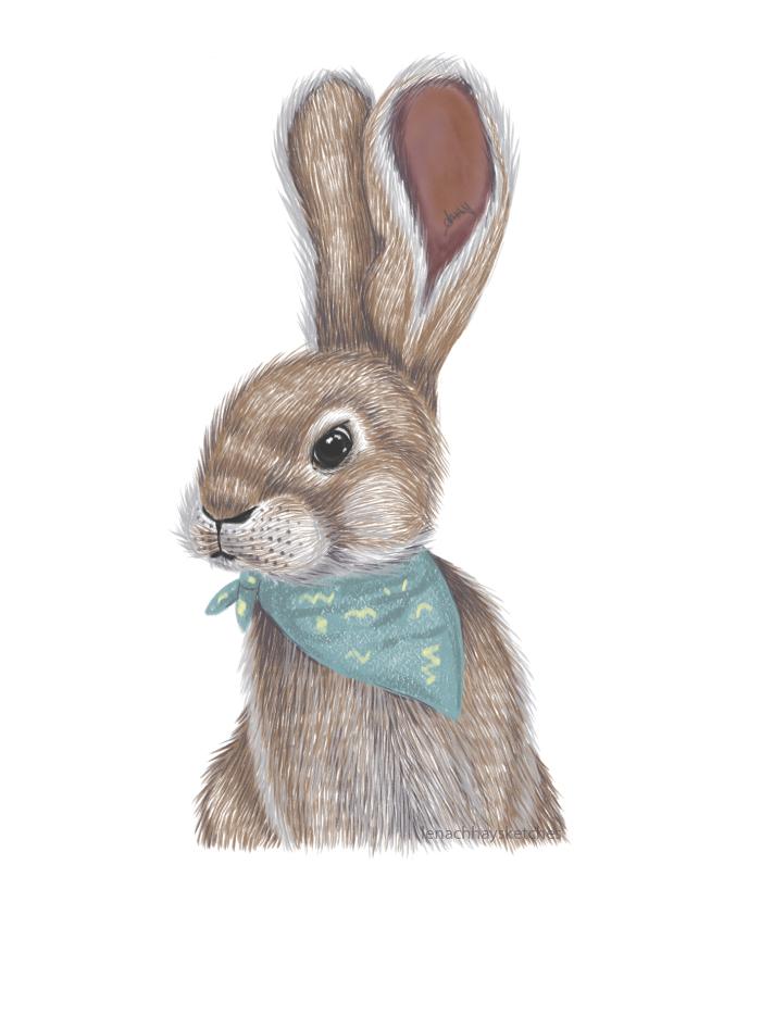Bunny 220619 300X