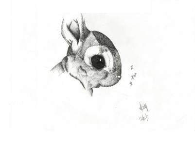 Bunny-30-06-05-800pf