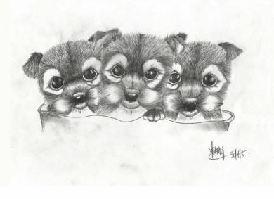 Triplets-30-04-05-800pf